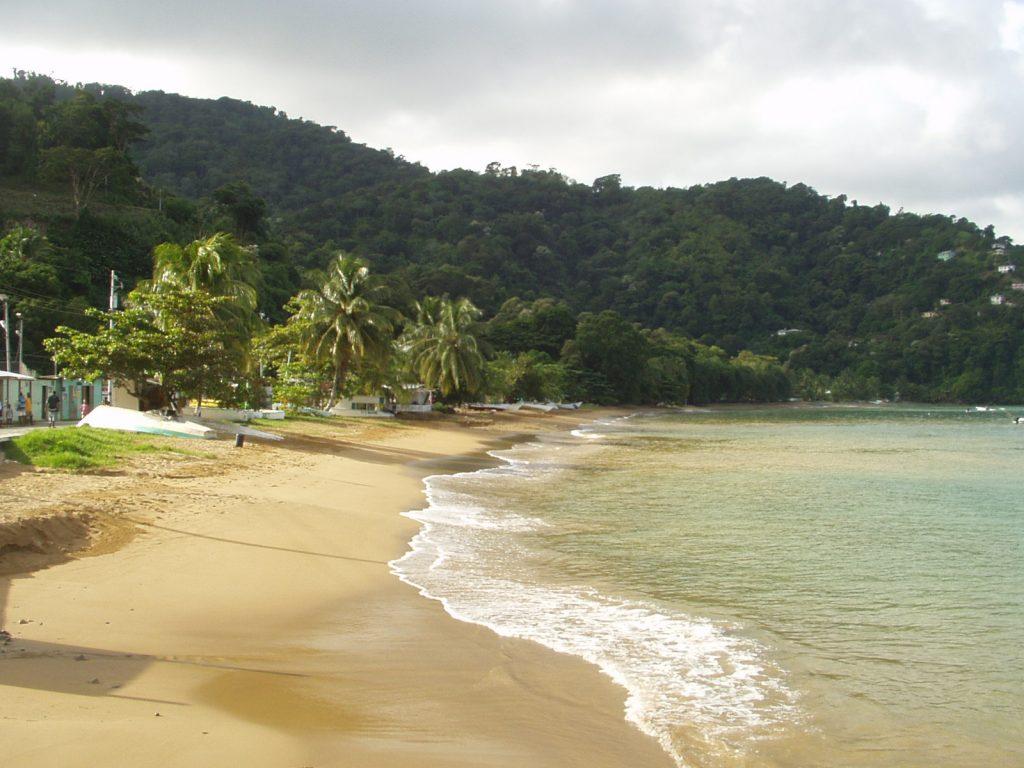Dette billede har en tom ALT-egenskab (billedbeskrivelse). Filnavnet er Caribiskstrandogpalmer1-1024x768.jpg